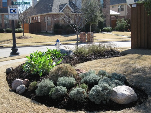 Frontyard landscape design ideas