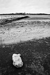 winter at the river (4) (dittma_d) Tags: winter ice river hamburg fluss eis elbe wittenbergen rissen