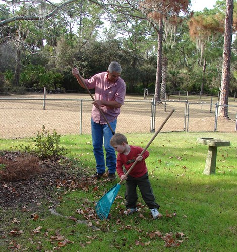 Helping Papa