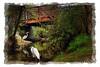 egrets under the bridge (Kris Kros) Tags: bridge art photoshop bravo touch under kris paparazzi hdr kkg egrets the cs4 photomatix kros kriskros 1xp joe1027 kkgallery