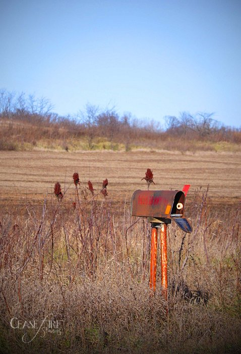 The abandoned mystery mailbox