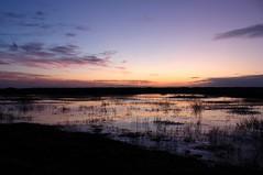 Golden frozen pond (Slveig Bjrg) Tags: winter ice sunrise frozen vetur potofgold s justclouds