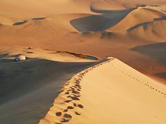 The Ica Desert (Marco Di Fabio) Tags: lake southamerica america lago sand desert dunes south dune footprints per arena sur desierto duna ica sud deserto orme sabbia huacachina sudamerica huellas ande oasi americadelsur lpdesert sabla flickrdiamond flickrestrellas dblringexcellence tplringexcellence lppaths lpdeserts eltringexcellence