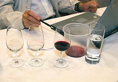 Mendoza: Elegirán vinos top de exportación
