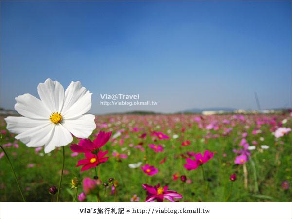 【2010春節旅遊】春節假期~南投市貓羅溪沙雕藝術節22