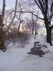 7-48-10february2010 157