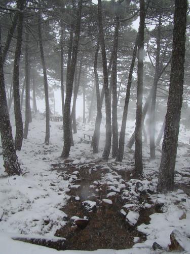 Merenderos nevados Los Reales