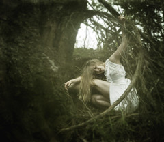 Perilous Nest (Leah Johnston) Tags: california tree bird forest leah branches fineart brooke portfolio johnston whitedress leahjohnston brookeshaden leahjohnstonphotography leahjohnstonphotographer