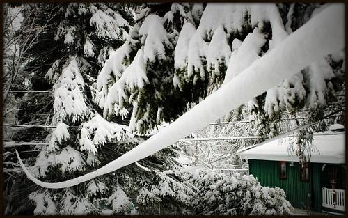Fil d'hiver