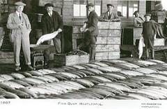 Fish Quay, Hartlepool