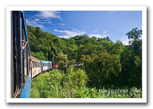 Trem da Serra, Paraná