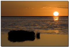 Orange Allure (mliebenberg) Tags: coast landscapes sunsets lancashire lytham stannes fylde grannysbay markliebenberg markliebenbergphotography