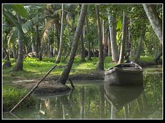 Boat Along (dave turner1) Tags: india boat nikon kerala backwaters trivandrum kovalam daveturner d80 nikond80