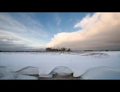 Farm and winter (Danil) Tags: winter sky snow holland ice netherlands dutch landscape daniel sneeuw nederland groningen reitdiep landschap sloot boerderij d300 grunn winsum schouwerzijl middaghumsterland sneeuwduin schapharsterzijl farmandwinter