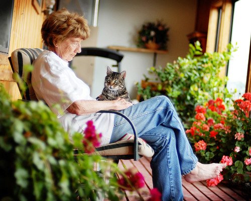 Gram and Jasper on the sun porch.