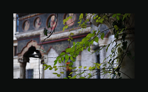 Stavropoleos Monastery_12