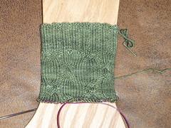 03062010 001 (SewKnitMama) Tags: socks jitterbug kal 52ppiii