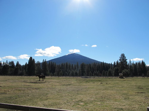 Black Butte in the sunshine