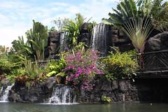 IMG_8830_20100130_cb808 (CharlieBoy808) Tags: show boy college girl fiji canon fire hawaii dancing knife center hawaiian ha kane cultural samoan keiki polynesian pcc wahine tahitian heald 40d