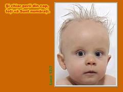 Luca 12-07 (Palosi Marton) Tags: kids childrens copii crestine versete biblice
