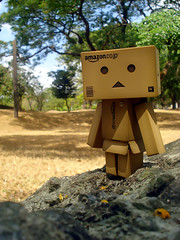Danbo (spade13th) Tags: amazon box outdoor revoltech jfigure danboard
