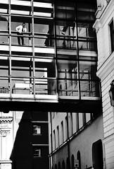 (Staffan Wingborg) Tags: street bridge winter urban blackandwhite bw man architecture office nikon phone noiretblanc sweden stockholm schweden streetphotography nordic sverige talking scandinavia bianconero estocolmo suecia 08 norrmalm nikond90 nikond90bw staffanwingborg