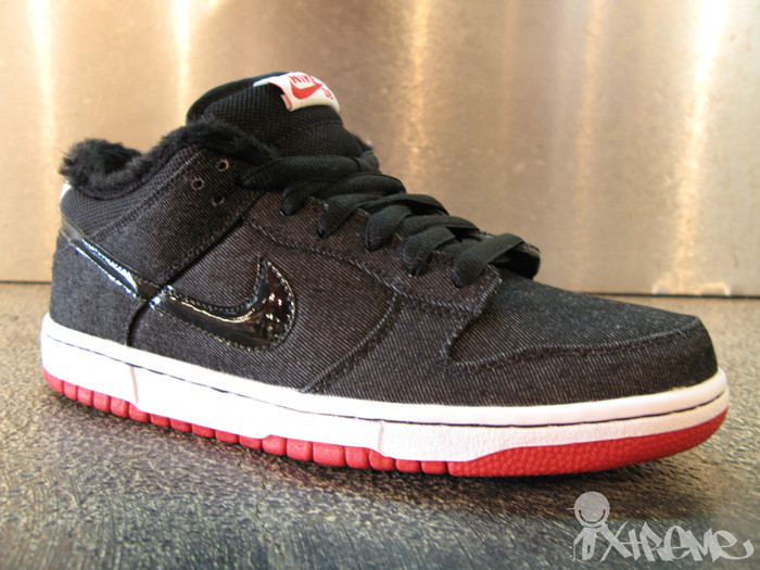 Nike SB March 2010 Shoes (Larry Perkins|Chirp)