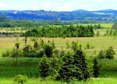 Murnauer Moos (dorena-wm) Tags: green church nature landscape bayern bavaria hill kirche grn moor landschaft bume baum oberland hgel murnau murnauermoos pfaffenwinkel flickraward dorenawm