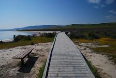 Soda Lake Boardwalk