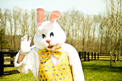 Stranger #95 - Easter Bunny, aka Gene (Universal Stopping Point) Tags: park trees rabbit bunny field yellow yard fence hair costume furry picnic kentucky ears bbq barbeque morehead cookout easterbunny easteregghunt easterhare animalcostume yellowbowtie polkadotvest forthefurries polkadotbowtiegloves nowthatiactuallylookthoseareeggsnotpolkadotsthatsdisappointing