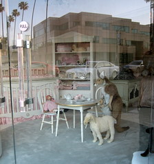 Invasion of Privacy (Mark Luethi) Tags: beverlyhills beastiality