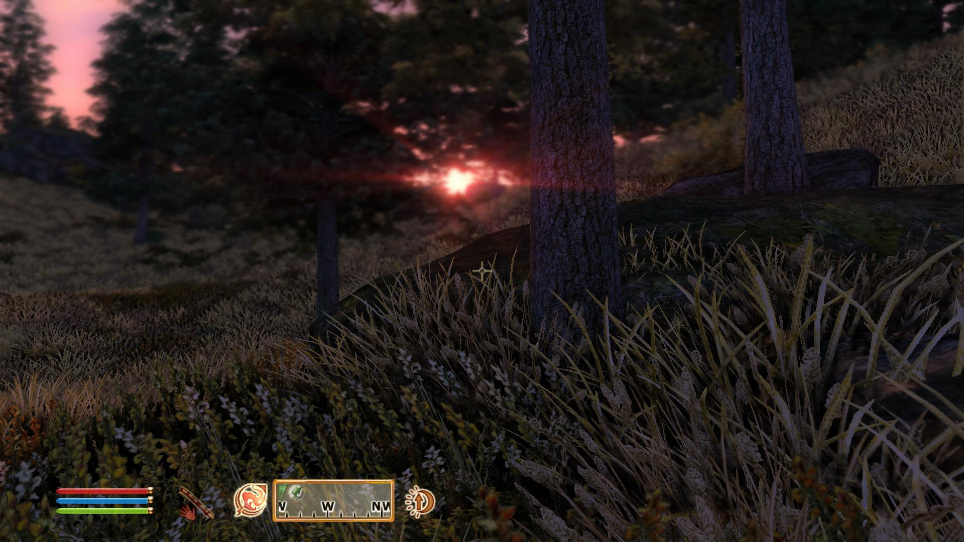 how to take screenshots in oblivion steam