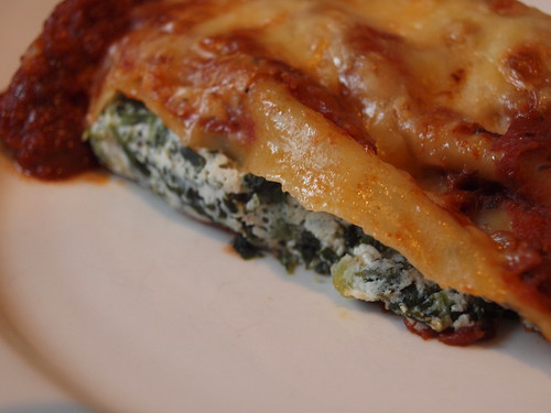 cannelloni up close