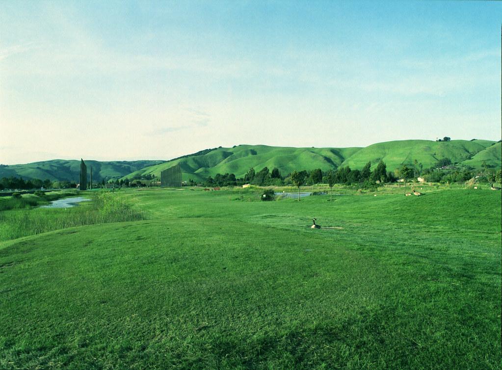 Green landscape taken with Pentax 645N, scanned in Canon 8800F