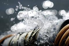 Wasserrohren