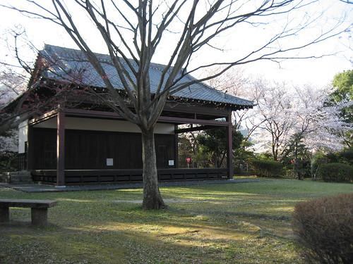 大竹 亀居公園 桜 画像 18