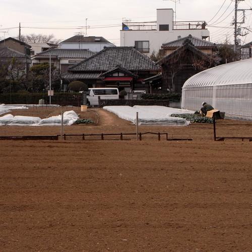 from Okudo to Shin-Koiwa 01