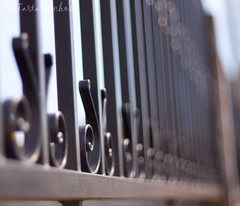The third fence (Os Tartarouchos) Tags: fence dof bokeh valla fencefriday