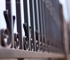 The third fence (Os Tartarouchos) Tags: fence dof bokeh valla fencefriday
