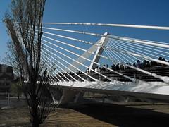 DSCF3065.jpg (Josep M. Mart) Tags: bridge puente catalonia pont catalunya brcke catalua catalunia lleida catalogna katalonien catalogne lerida catalunha katalunio lerdo lrida katalonia leida cataloni catalania katalunia katalnia ilerda katalunya catalonha catalonien   katalnsko tatarnia  katalonija lhida katalonya katalanska javiermanterola           kataloni kataloonia  kataloanje anchatalin catalinia ynchataloan  katalna
