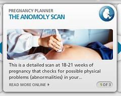 NHS Pregnancy Desktop Spelling Mistake Anomoly...