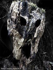 Mom, could  you leave the light on ? (Monch_18) Tags: wood art texture strange dark pareidolia skull noir spiderweb evil sombre madness psycho nightmare artbrut bizarre montreuil bois tte cri monstre monch trange peur folie toiledaraigne dmon angoisse morbide inquitant expressif pareidolie
