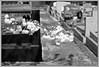 7 - 19 avril 2010 Paris Cimetière de Belleville Vie et mort = Life and death (melina1965) Tags: flowers trees blackandwhite bw cemeteries paris flower macro tree sol fleur cemetery grave graveyard fleurs spring nikon îledefrance noiretblanc graveyards pavement belleville graves arbres vip april avril arbre printemps 2010 cimetière smörgåsbord sols 75020 cimetières d80 photoscape geniiloci 20èmearrondissement thisphotorocks veryimportantphotos nikondslrforum