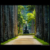 Welcome - a stroll in a bit of paraside ... (juntos ( MOSTLY OFF)) Tags: brazil beautiful riodejaneiro perception alley relaxing unesco pointofview palmtrees jardimbotanico osm wag op welcome vernissage richards stroll botanicalgardens soe musictomyeyes bellissima magestic thegoldengallery mywinners abigfave anawesomeshot holidaysvacanzeurlaub photosa infinestyle anawesomephoto flickrdiamond flickrshearts theunforgettablepictures betterthangood goldstaraward peaceawards thirdlife thesuperbmasterpiece heatsawards citricaward saariysqualitypictures firstofall highenergyplaces jobtesgroup masterofthemasterpieces antologyofbeauty rpho 4mmgroup aleiabarbosarodrigues palmeirasimperiaes dragongroup artfirheart segretgardenofexclence overthexllence favouritesofmyfaves sailthe7thseas