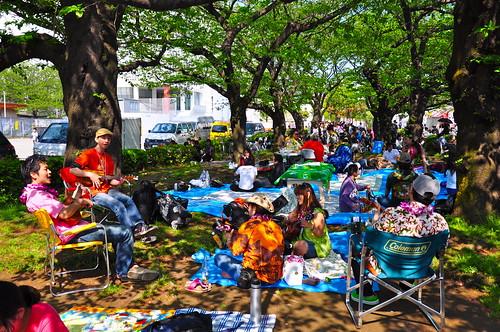 Hawai Festival