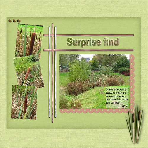 Surprise find