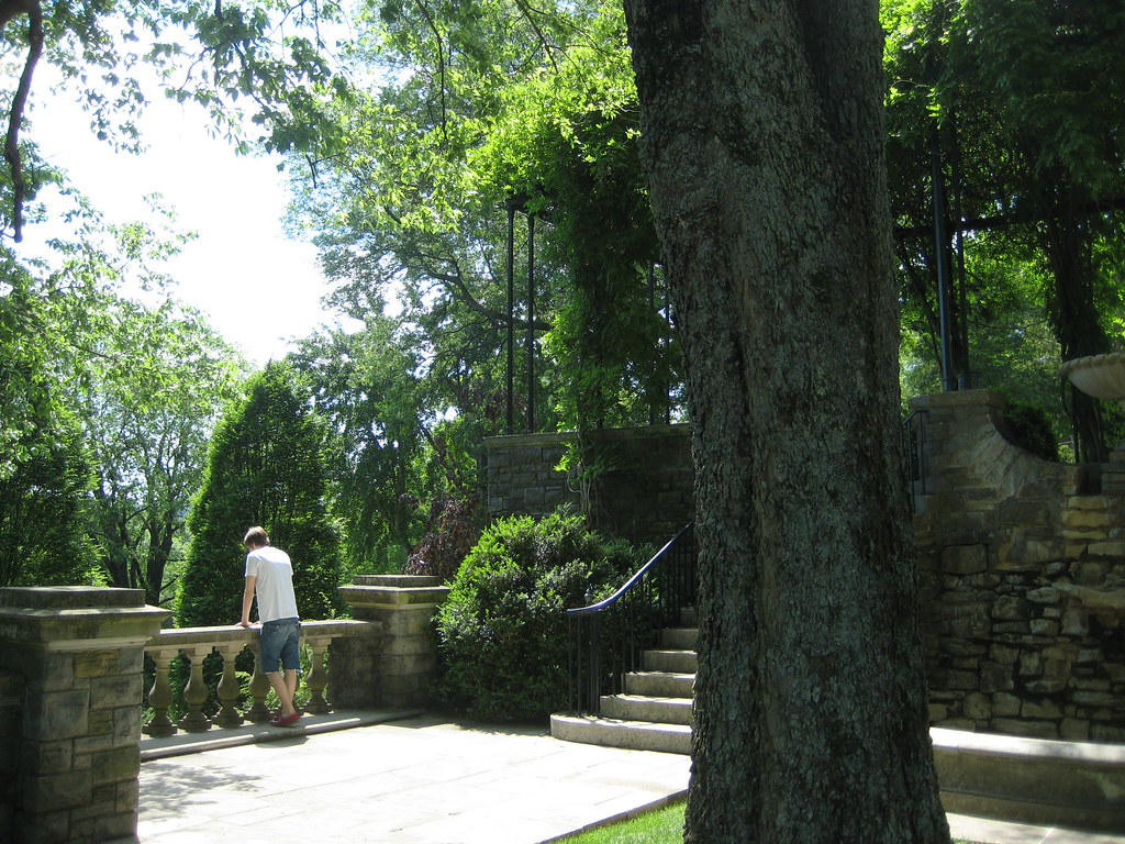 an afternoon at cheekwood