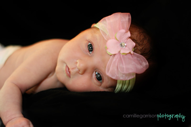 Utah California Newborn Baby Photographer