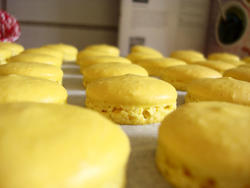 homemade safran macarons