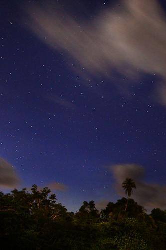 IMG_3115-w Night